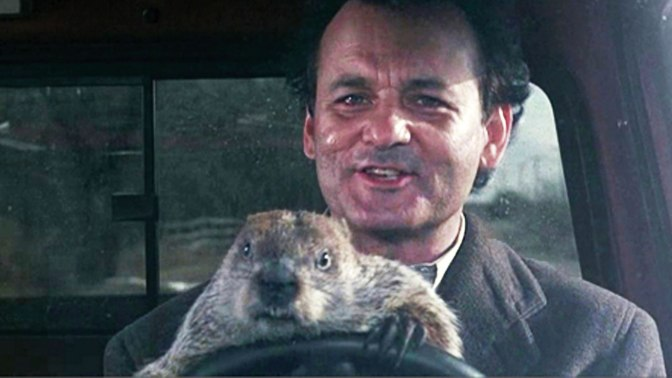 Now You Can Watch EVERY DAY from Groundhog Day…AT THE SAME TIME!!