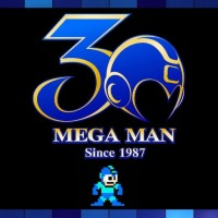 Presenting the Official Mega Man Bicycle. Just What The World Needed...