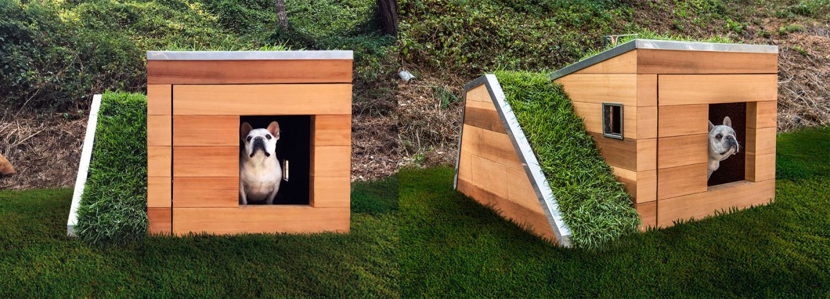 Here's Some Fancy Dog House 'Bark-itecture,' If You Will...